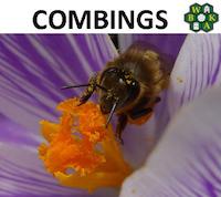 Combings April 2014