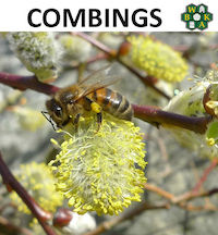 Combings May 2015