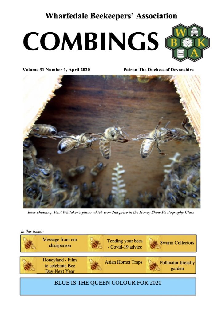 Cover image, Combings Spring 2020