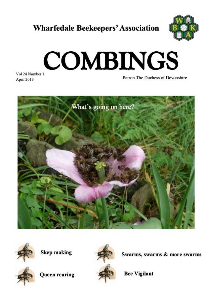 Combings April 2013